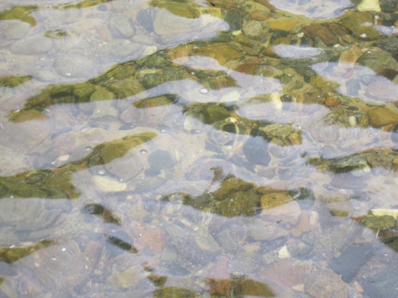 Чиста водица в Онежском озере.