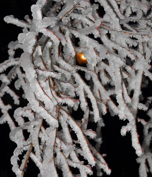 Ледяная паутина 2